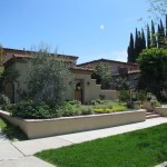 southern california landscape in beverly hills